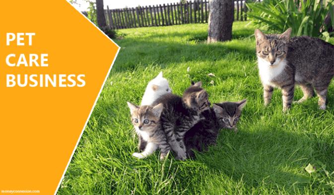 idea de negocio de cuidado de mascotas