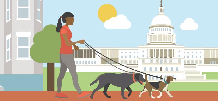 Caminante de perro de ideas de ajetreo lateral