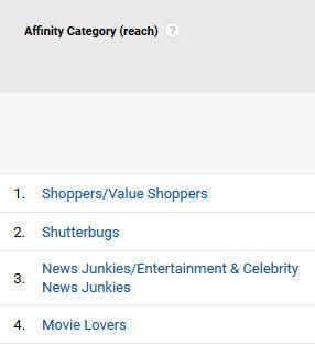 Psicografía en las categorías de afinidad de marketing de Google Analytics