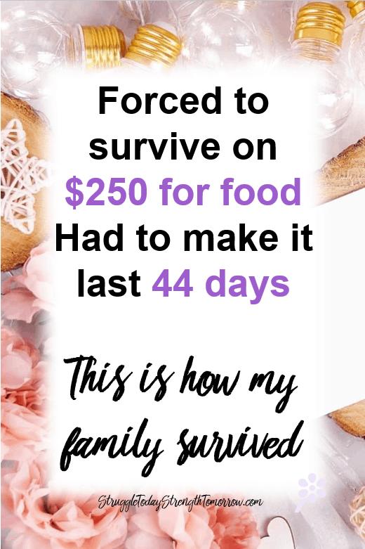 obligado a sobrevivir con $ 250 para la comida tuvo que durar 44 días así es como sobrevivió mi familia