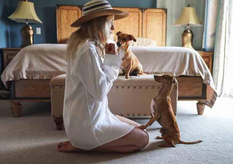 Gana dinero con una mascota que se queda como mamá en casa
