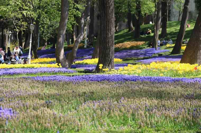 Ofrecer servicio de jardinería paisajística como una estancia en casa mamá