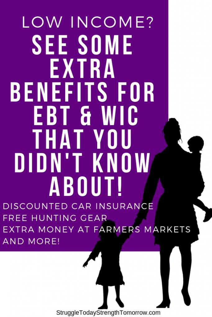 eres de bajos ingresos? ¡Eche un vistazo a estos beneficios adicionales para obtener cupones de alimentos ebt snap y wic que no conocía! ¡toneladas de cosas gratis o con descuento que pueden cambiar tu vida!