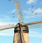 Persiguiendo molinos de viento como Don Quijote