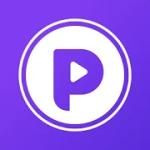 Resumen de revisión de Podcoin