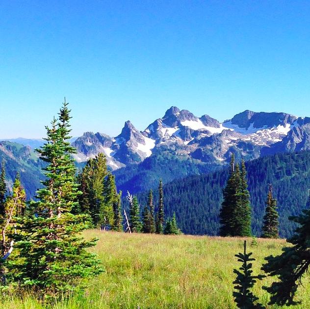 Parque Nacional Monte Rainier 2
