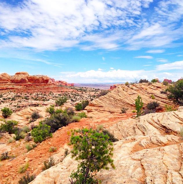 Parque Nacional Canyonlands 3