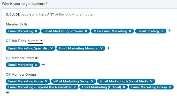 ejemplo de audiencia objetivo en LinkedIn