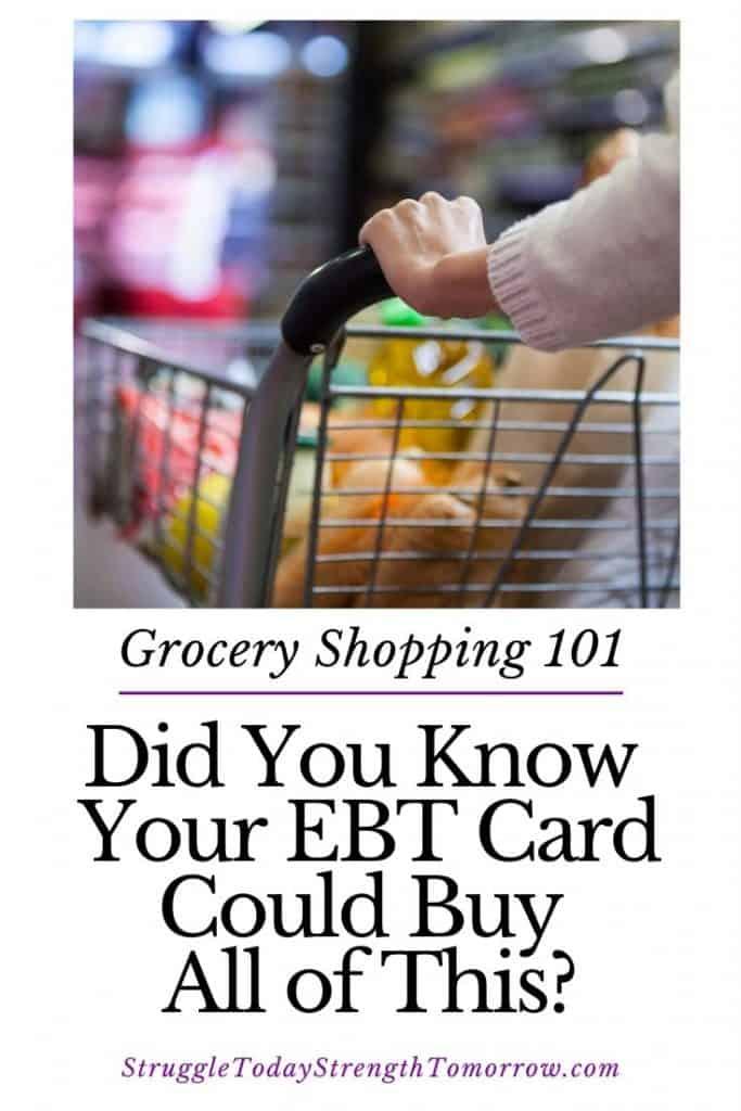 compras de comestibles 101. ¿Sabía que su tarjeta EBT podría comprar todo esto? ¡Haga clic para ver todas las cosas increíbles que puede comprar con su tarjeta EBT (beneficios de estampillas para comida y efectivo) más una lista práctica de lo que no puede comprar! ¡Es genial estar informado! #frugalliving #lowincome # presupuesto de abarrotes #savingmoney #ebt # foodstamps #benefits