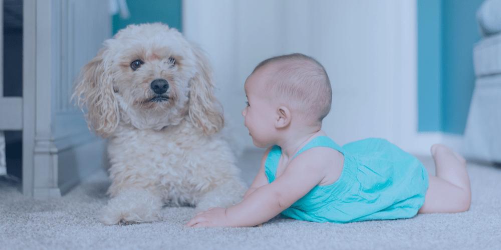 Baby preparation finances