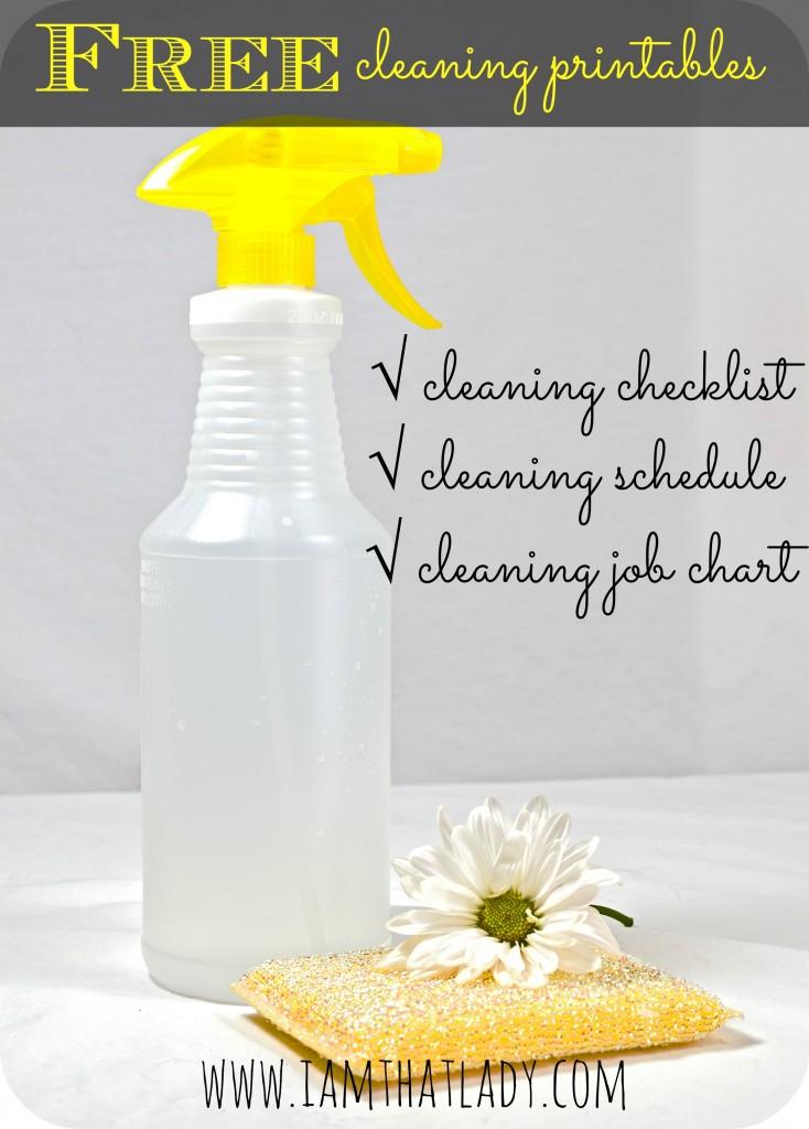 ¿Le está costando mantener limpia su casa? Aquí hay un paquete de imprimibles de limpieza GRATUITOS que incluye una lista de verificación de limpieza, un cronograma y una tabla de trabajo.