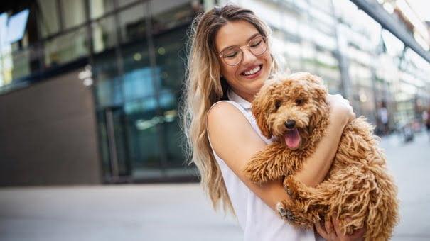 Cómo decidir si el seguro de mascotas vale la pena