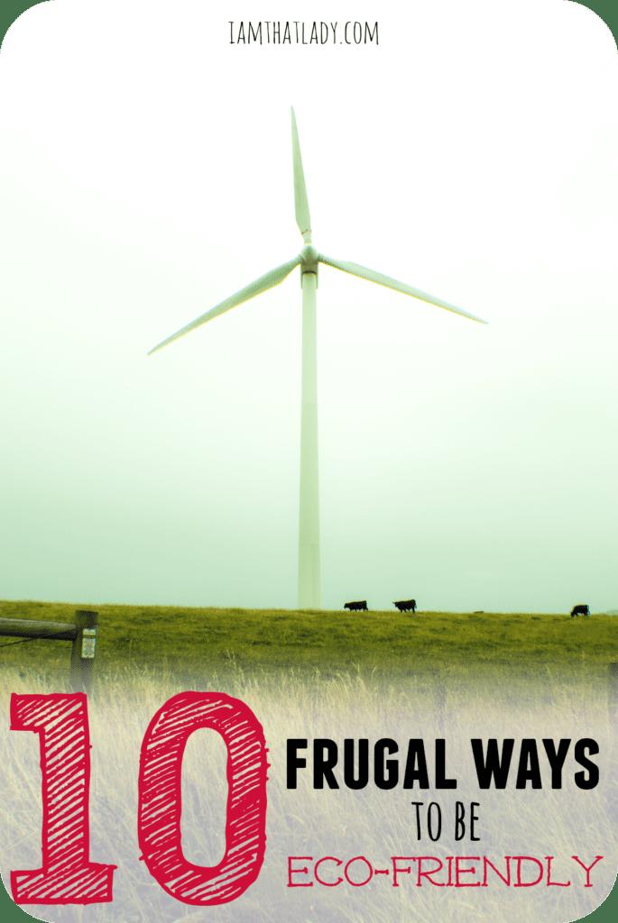 10 maneras frugales de ser ecológico