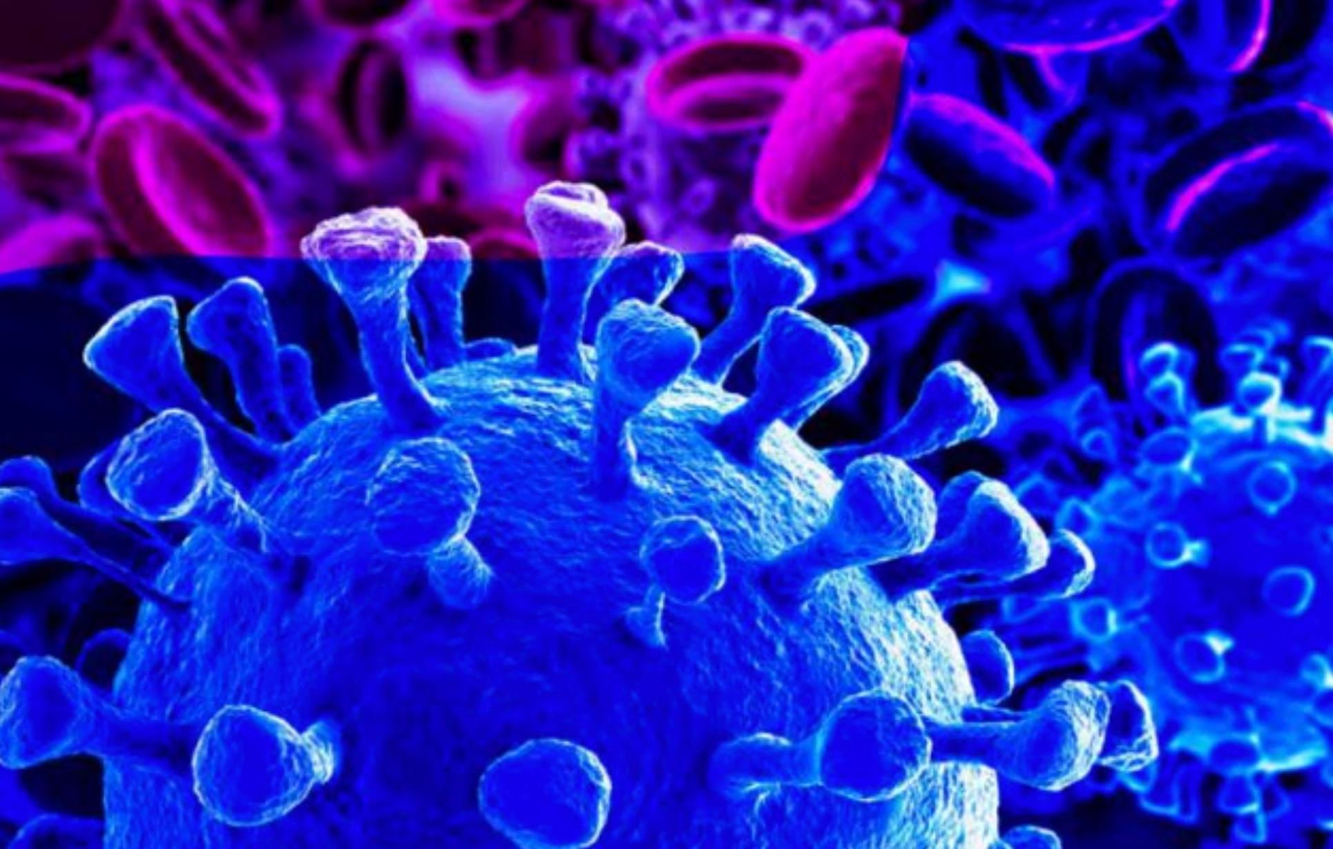 ¿Estaba circulando el coronavirus en EE. UU. Durante el otoño de 2019?