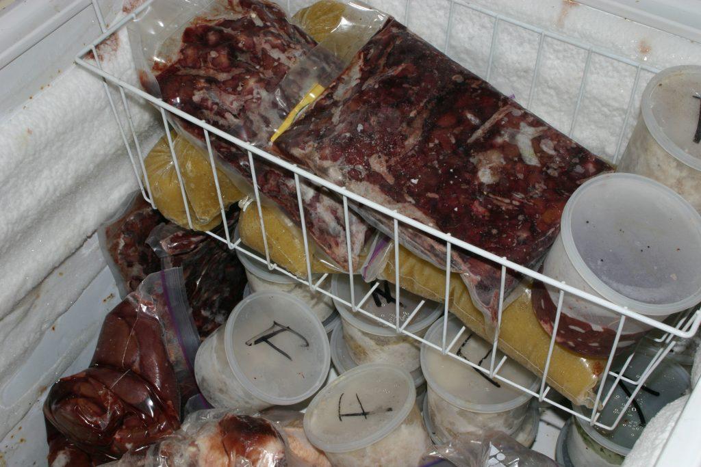 Congelador de cocina