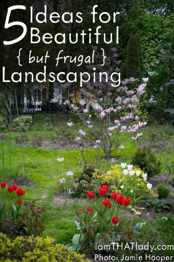 5 ideas para un paisaje hermoso (pero frugal)