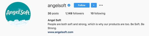 instagram bios angelsoft