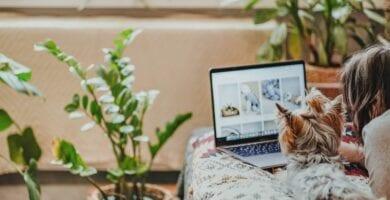 Desmontando planes de pago: todo lo que necesita saber