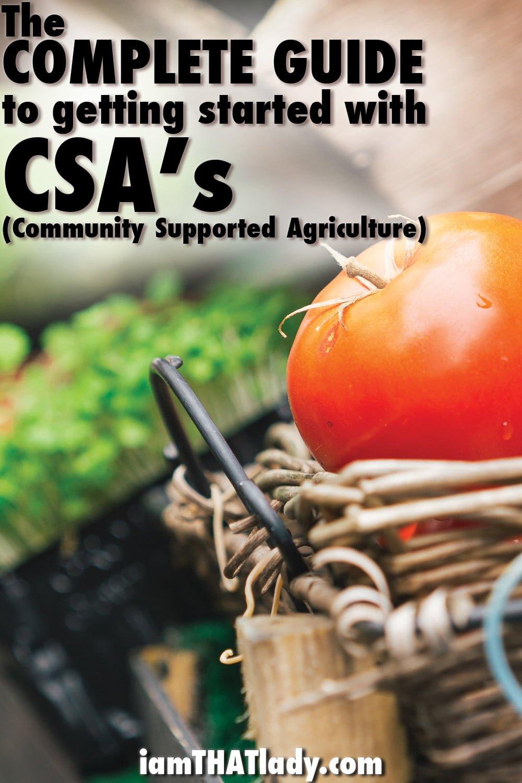 ¡La comida local y orgánica no tiene que ser costosa! ¡Mira la Guía Completa para comenzar con CSA's!