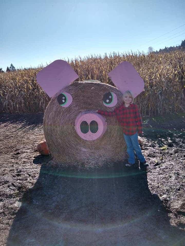 Cerdo gigante hecho de heno